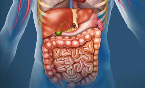 alimenti ricchi  zinco pazientiit