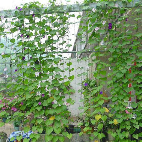 Garden Green Nylon Trellis Netting Support Climbing Plant