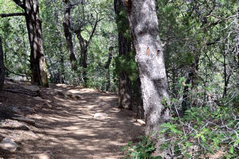 rollin times wilderness shady mostly trail once nice area