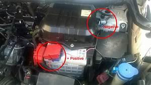 Rat Problem In Ecosport  Ford  U2013 Install Varna Rat Repeller
