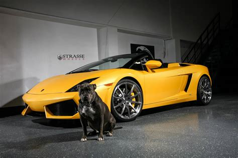 Giallo Midas Lamborghini Gallardo Spyder With Strasse