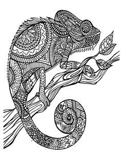 mandala black and white animal - Google Search | Coloring