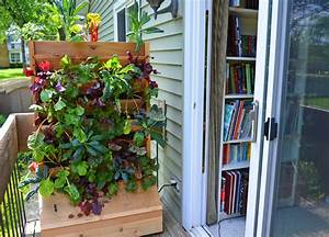 plant a vertical wall garden vegetable farm shawna coronado With katzennetz balkon mit urban vertical garden