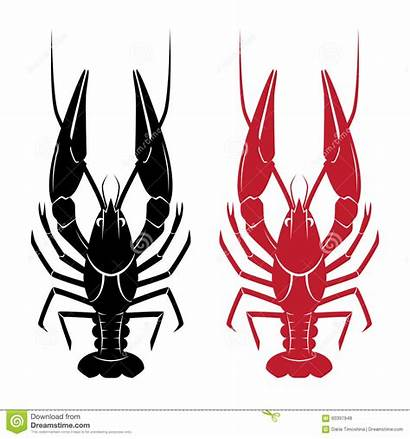 Crawfish Illustration Vector Background Illustrations