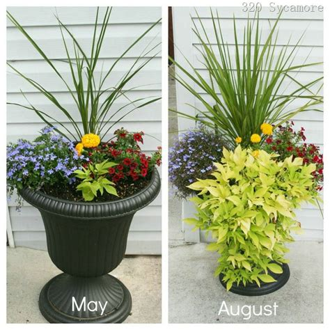 big flower pot arrangements 3042 best images about garden containers on pinterest container plants fall containers and