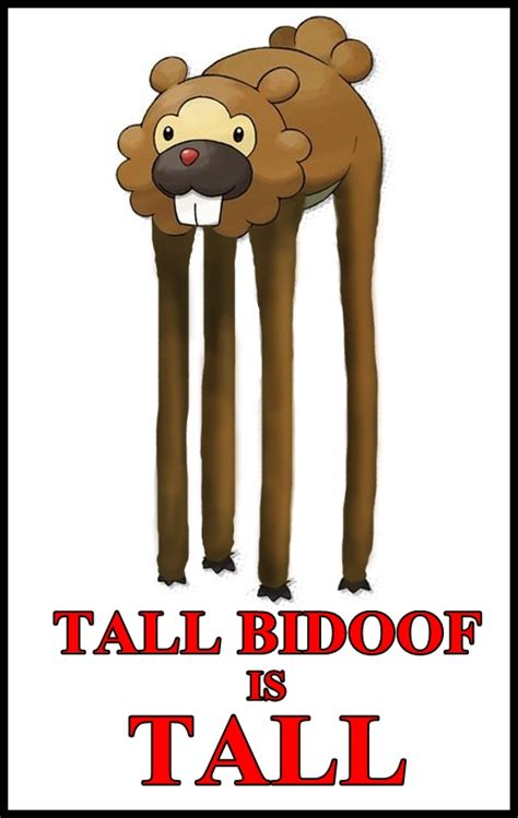 Bidoof Meme - pin bidoof meme image search results on pinterest