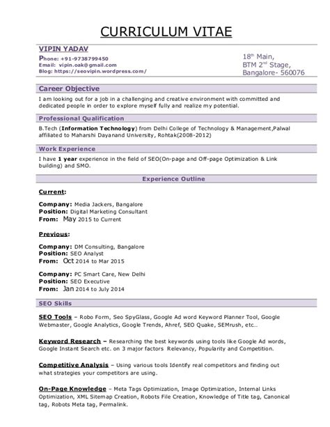 vipin seo resume seo resume sle format