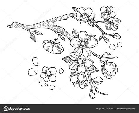 Ilustracja Wektorowa Kolorowanka Kwiat Wiśni