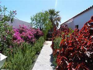 La Palma Jardin : la palma jardin bewertungen fotos preisvergleich los llanos de aridane spanien ~ Markanthonyermac.com Haus und Dekorationen