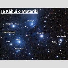 Finding Matariki  Kiwi Conservation Club