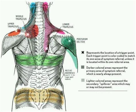 trigger points  relieving neck   shoulder pain