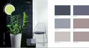 best couleur pour une entree pictures joshkrajcikus With superior peinture couleur gris taupe 3 1001 idees pour savoir quelle couleur pour un couloir