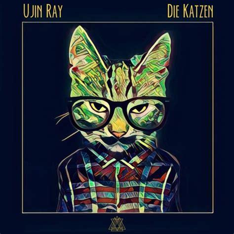 Ujin Ray - Die Katzen (Bufi Remix) by Ⓝⓘⓖⓗⓣ Ⓝⓞⓘⓢⓔ | Free ...