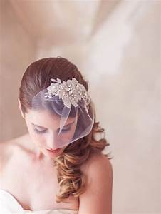 Ivory Wedding Headpiece Birdcage Veil Hair Comb Lace