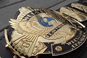 The Undisputed Championship Will Usher in a New Era in WWE ...