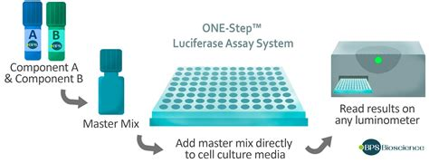 ONE-Step™ Luciferase Assay System