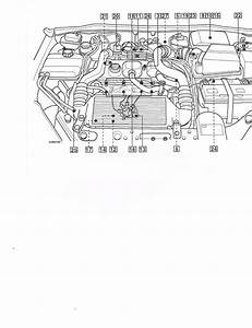 Ford Focus 1 6 Tdci Engine Diagram