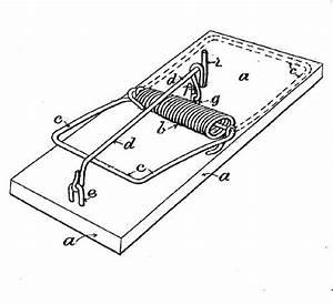 Physics  Mouse Trap Cars