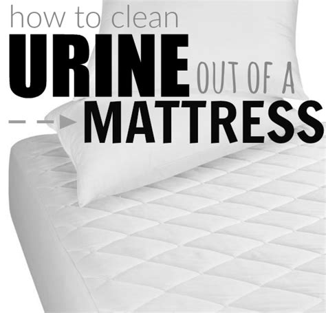 clean urine from mattress how to clean urine from a mattress best tips tricks 2018