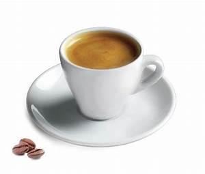 "Cuisinox 6"" Porcelain Espresso Cup & Reviews Wayfair ca"