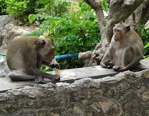 Que Voir En Thailande   Phra Nakhon Khiri Historical Park  Phetchaburi   Tha U00eflande   U2013 F U00e9esmaison