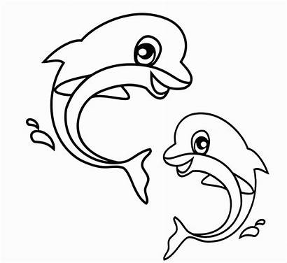 Coloring Animal Pages Dolphin