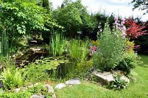 Pflanzen Rund Um Den Gartenteich : standortwahl f r den gartenteich ~ Whattoseeinmadrid.com Haus und Dekorationen