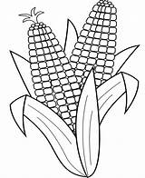 Corn Coloring Stalk Printable Indian Template Templates Getcolorings Popular sketch template