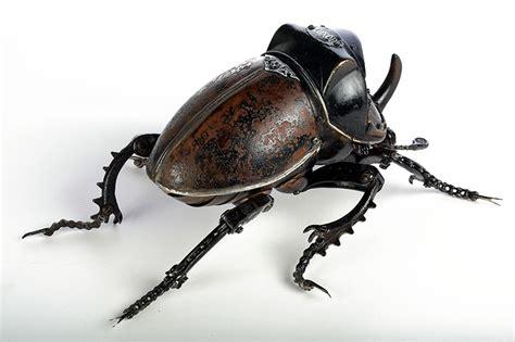 animaux  insectes assembles  partir dobjets reutilises