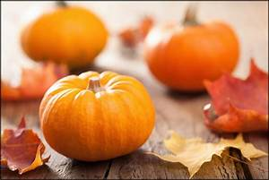 What, Are, The, Health, Benefits, Of, Eating, Pumpkin, Here, Are, 11, Reasons, Why, Pumpkins, Are, Extremely