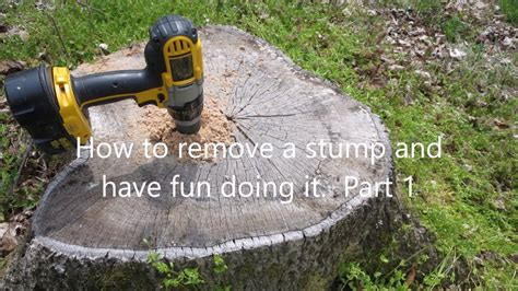 wood fence post easy way to remove tree stumps part 1