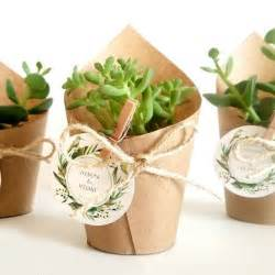 wedding shower favor ideas www trendipot succulent cactus sukulent kaktüs