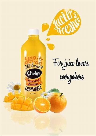 Juice Advertisement Fruit Behance Poster Advertising Packaging