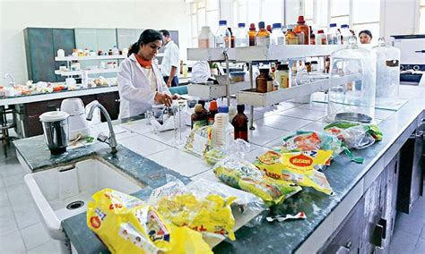 cuisine non agenc food agency to keep tabs on non maggi brands through