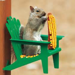 adirondack chair squirrel feeder gifts for men