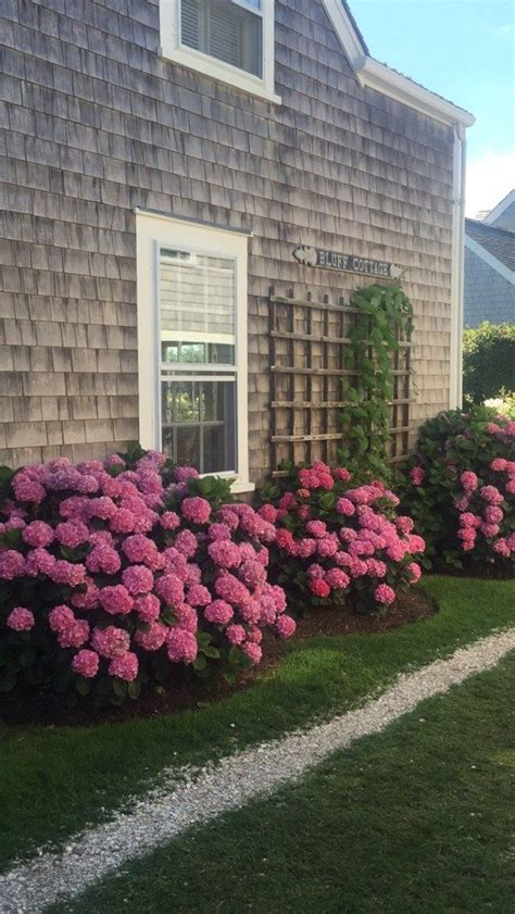 sconset  images house front flower beds