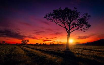 Scenery Sunset Wallpapers