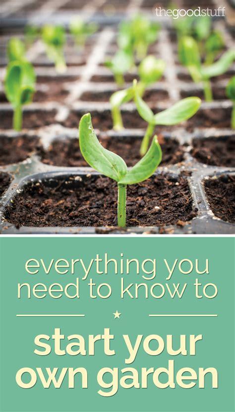 your own garden 5 ways to kick start your own urban vegetable garden care2 causes start your own herb garden