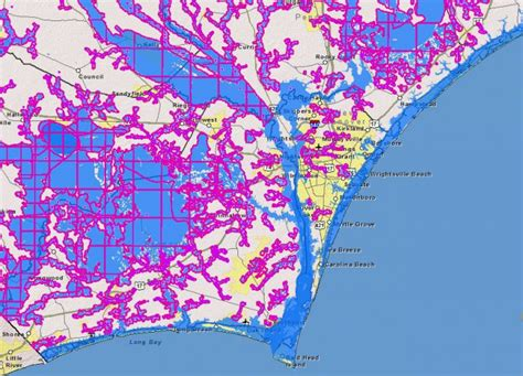 study flooding frequency  increase coastal review
