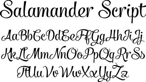 Salamander Script Font By Fenotype
