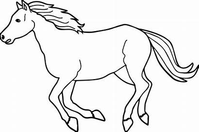 Horse Coloring Horses Pages Running Arabian Drawing