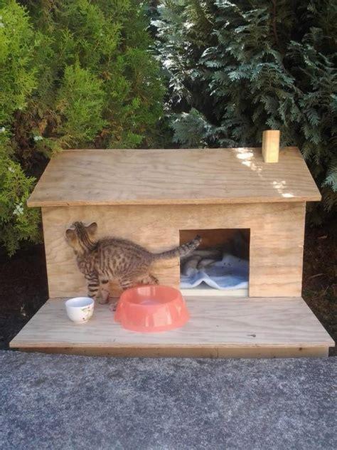 fabriquer une maison en bois pour chat