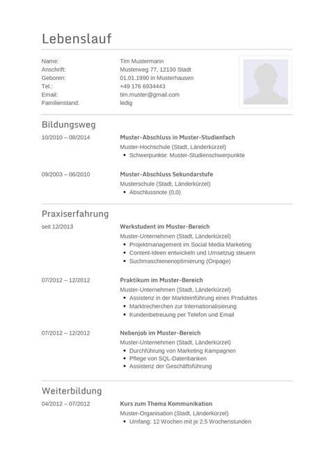 Vordruck Tabellarischer Lebenslauf by Lebenslauf Muster F 252 R Programmierer Lebenslauf Designs