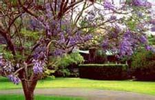 Waimea Garden Cottages  Kohala Wing  Waimea, Big Island