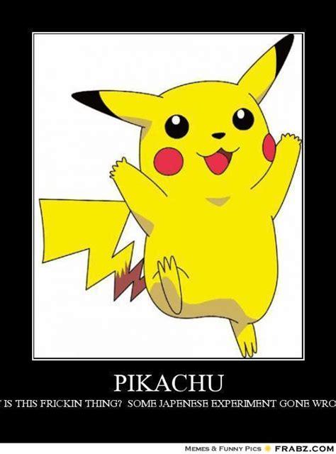 Pikachu Memes - pikachu as a cat