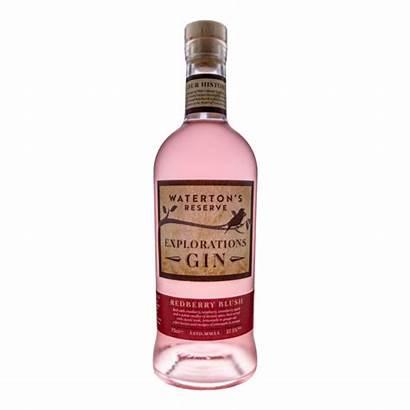 Gin Blush Redberry