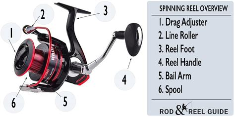 types  fishing reels reviews  guides