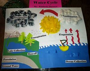My Sweet Daughter U0026 39 S Water Cycle Project  I Think She Did