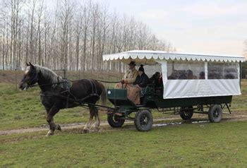 san rossore in carrozza parco di san rossore in carrozza informazioni per la visita
