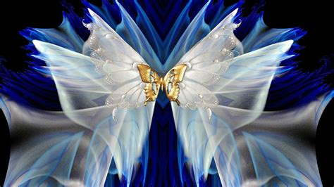 white  dgold butterfly hd wallpaper background image